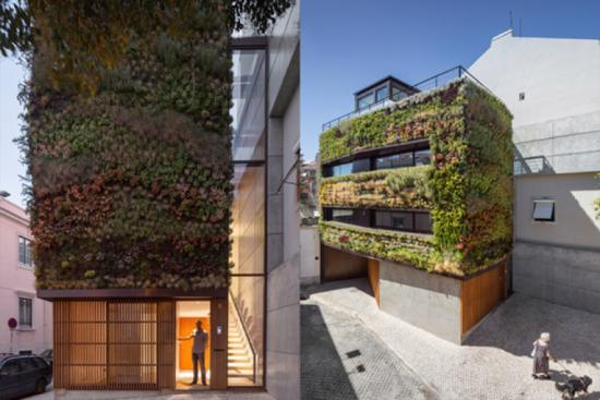 jardim vertical lisboa:Deixe uma resposta Cancelar resposta