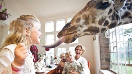 Hotel para família Giraffe Manor - Laguna