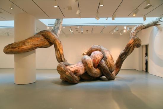 Arte sustentável de Henrique Oliveira - Laguna