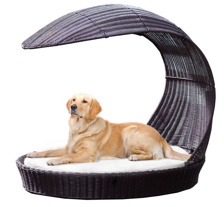 Canine Outdoor Dog Chaise Lounge 2 - Laguna