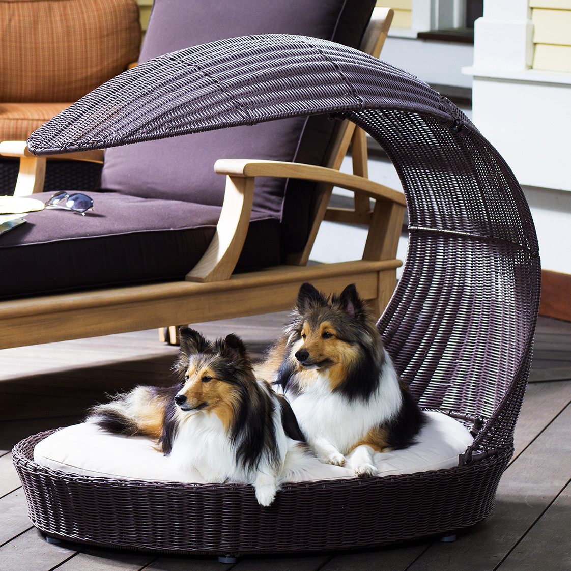 Canine Outdoor Dog Chaise Lounge - Laguna
