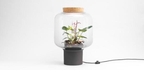 Mygdal Plant Lamp - Laguna