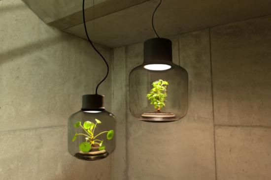 Mygdal Plant Lamp - a luminária com planta - Laguna
