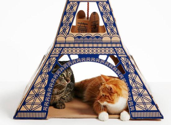 Poopy Cat Torre Eiffel - Laguna