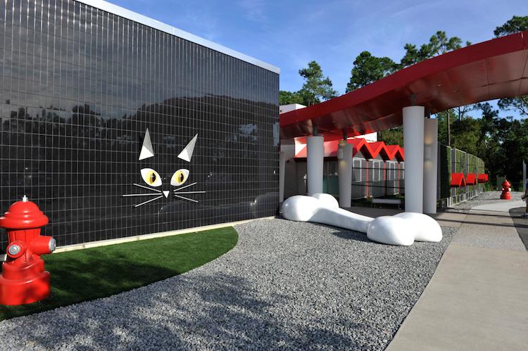 Hotéis luxuosos para pets - Construtora Laguna