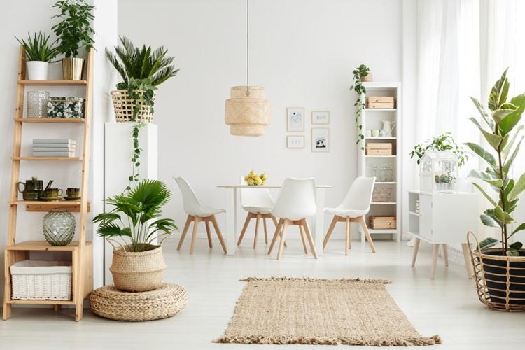 5 ideias que vão transformar sua casa - Plantas - Construtora Laguna