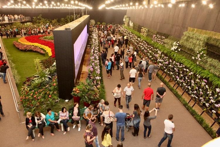 Destinos brasileiros para visitar na primavera - Joinville - Construtora Laguna