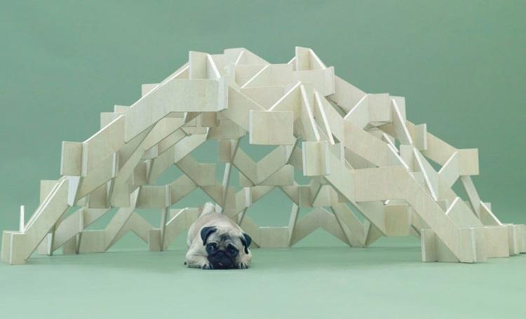 Museu de São Paulo recebe projetos de arquitetura para cães - Construtora Laguna