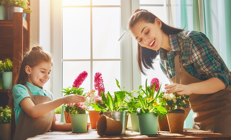 Confira como manter suas plantas saudáveis nas férias - Construtora Laguna