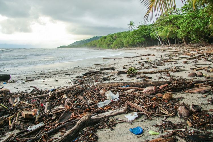 Exemplo de sustentabilidade Costa Rica busca se tornar neutra em carbono e eliminar plástico descartável - Construtora Laguna