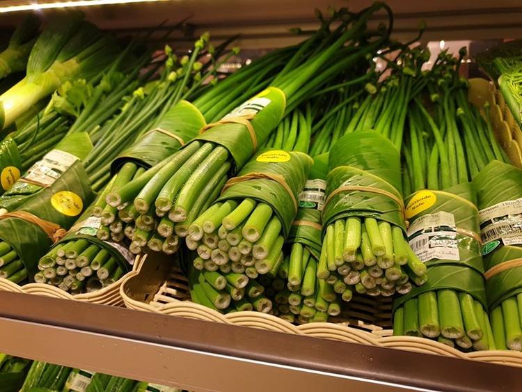 Folhas de bananeira substituem embalagens plásticas em supermercados asiáticos - Construtora Laguna
