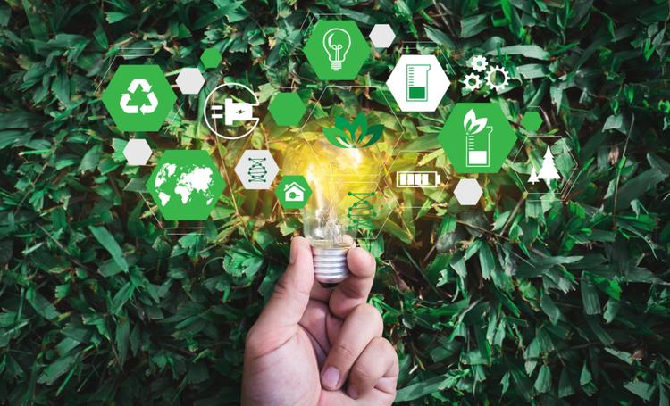 Sustentabilidade confira 5 aplicativos para usar no dia a dia