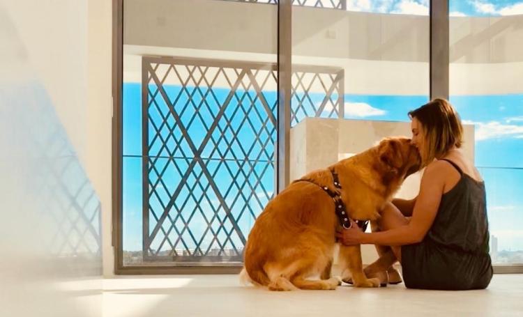 Saiba quais cuidados ter com seu pet no frio - Construtora Laguna