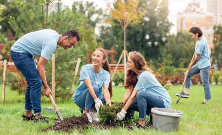 Confira estes aplicativos que auxiliam no plantio de árvores - Construtora e Incorporadora Laguna