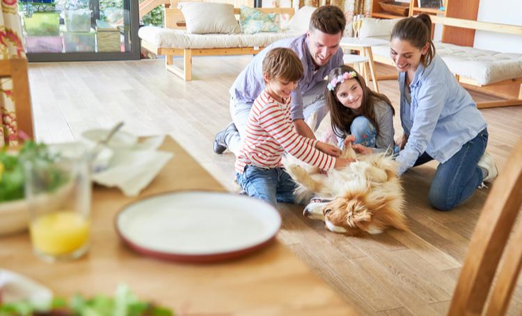 Família brincando com pet sem alergias – LAGUNA