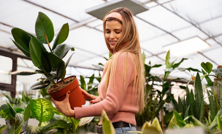 Mulher escolhendo plantas para iniciantes – LAGUNA