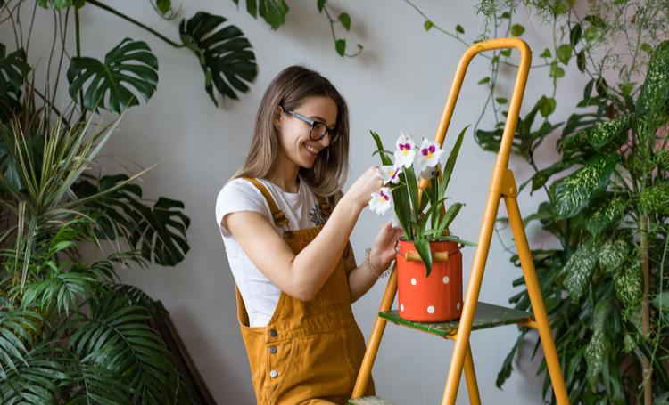 Mulher escolhendo vasos para o cultivo de orquídeas – LAGUNA