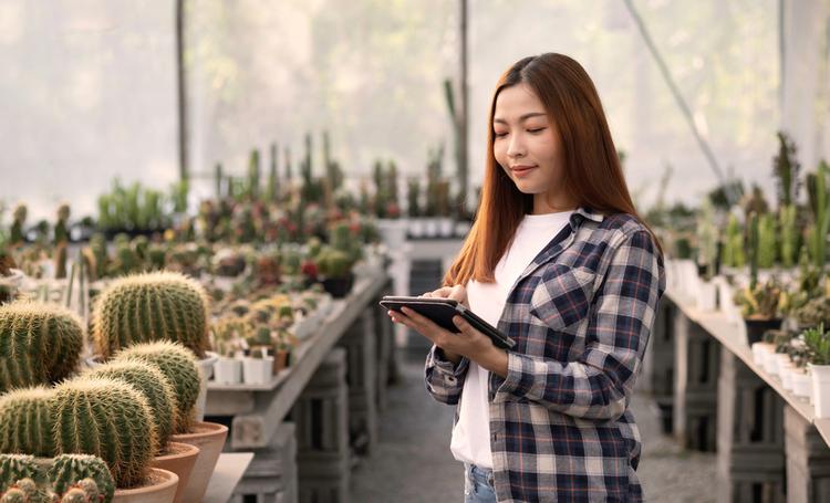 Mulher escolhendo plantas para iniciantes - LAGUNA