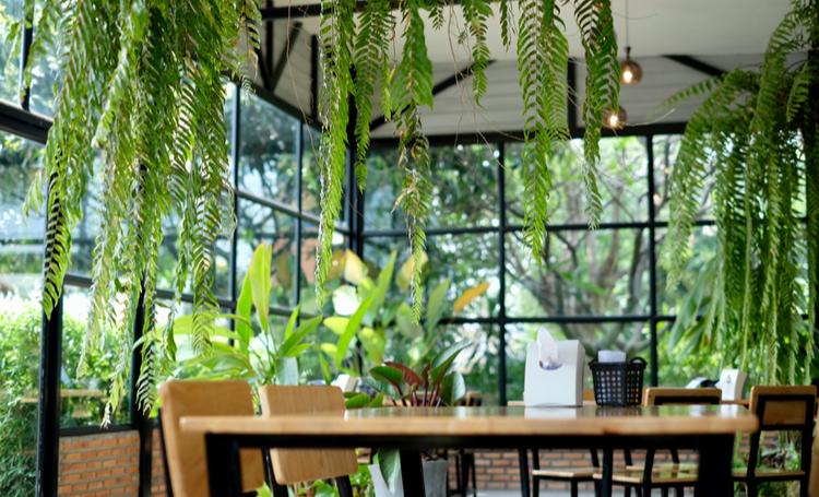 Jardim suspenso no interior de uma empresa